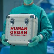 Росминздрав разработал законопроект по трансплантологии